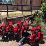 Zoo Snooze 2019
