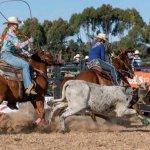Kapunda Rodeo Excursion