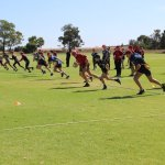 7-9 Rugby Clinics