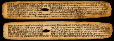 13th-century_Cikitsa-sara-sangraha,_Vangasena,_medical_text,_Sanskrit,_palm_leaf_manuscript