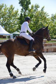 Concours Centre Equestre Sainte Hélène 4