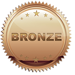 bronze pathfinders award