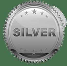 silver pathfinders award