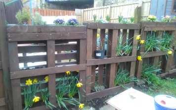 Audrey Dryburgh - Spring Sunshine (Garden) 4