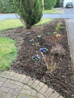 Coryn Barclay - Gardening (After)