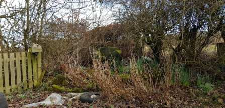 Phurpha Tsumu Lama Dhangsong - Garden 3 (Before)