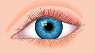 Fiches d'information : les principales urgences ophtalmologiques