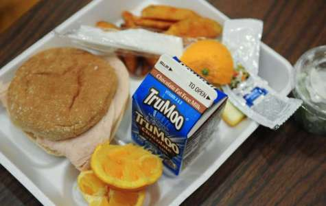 School Lunch Debt
