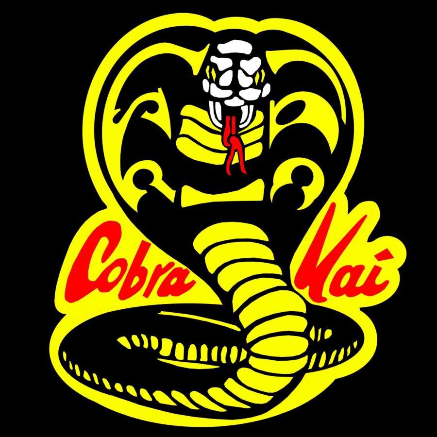 Cobra Kai Review