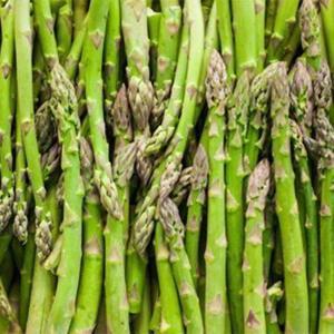 Asparagus-Triguero