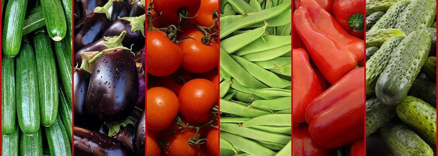 verduras-centrimerca INICIO