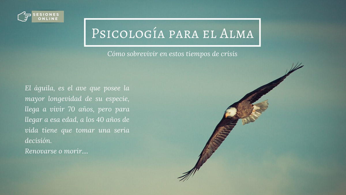 Centro-alma-psicologia-alma-01