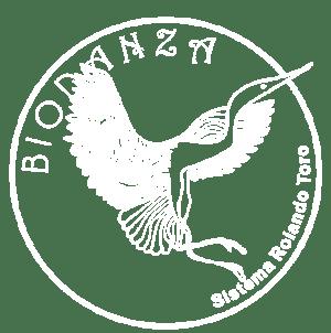 centro-alma-logo-Biodanza-blanco