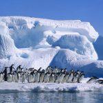Cambio Climático en Chile: Un problema que nadie quiere enfrentar