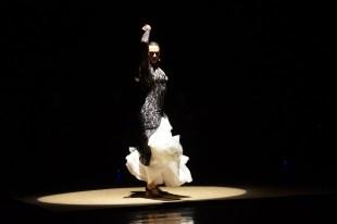Luna Flamenca Sao Carlos00