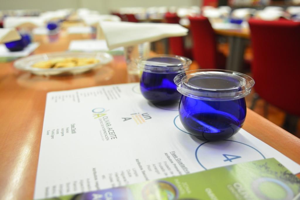 Olivar y Aceite01