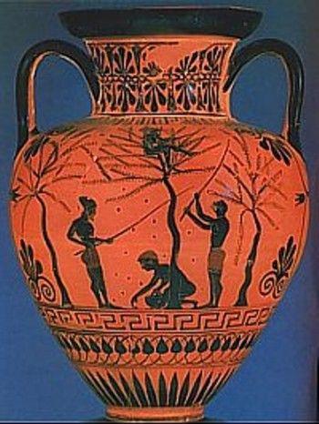 Cómo se clasificaban los aceites de oliva en la antigüedad