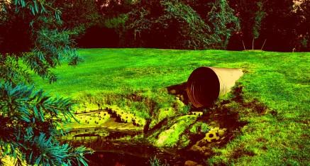 Avvelenamento di acque e sostanze alimentari: secondo la Cassazione non vale il principio di precauzione