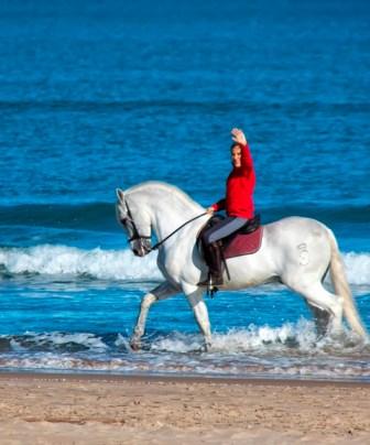 Excurciones a caballo alrededor Gandia