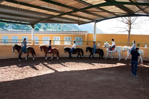 Aprender-a-montar-a-caballo-Gandia