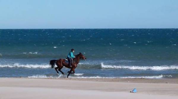 horse-riding-Costa-Blanca-beaches