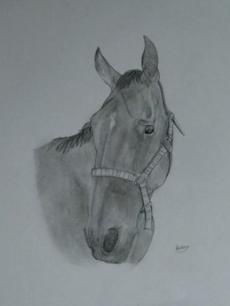 dibujos-de-caballos-originales
