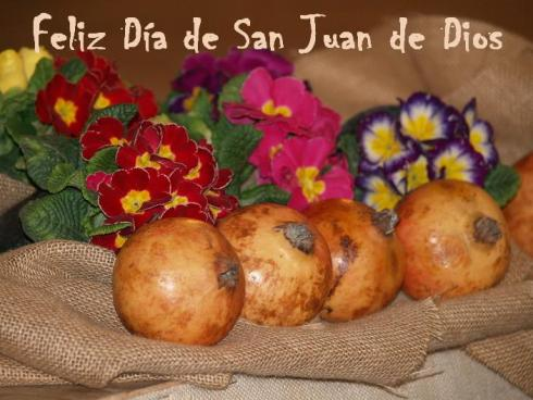 Feliz San Juan de Dios