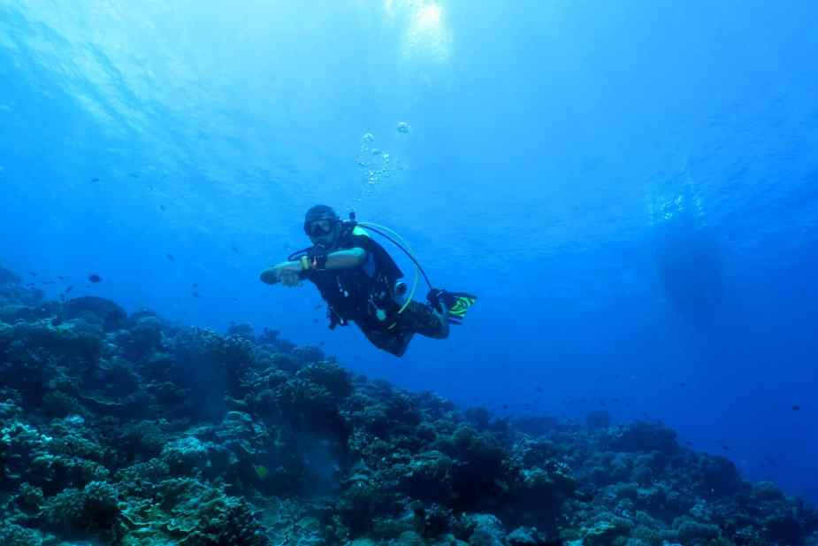 Buceo Manihi