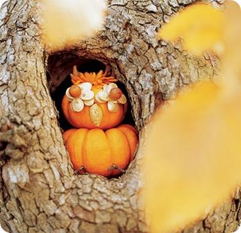 ms owl pumpkin