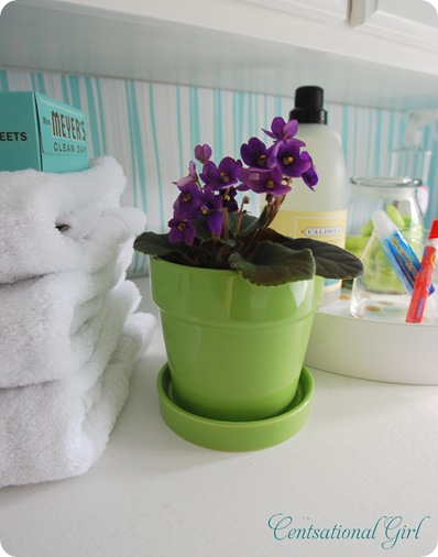 cg white towels and plant
