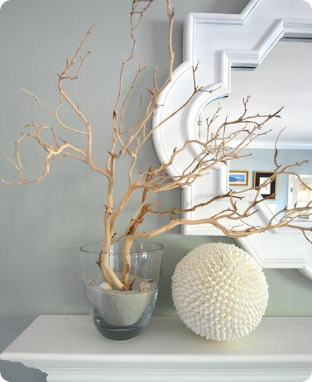 manzanita branches shell ball