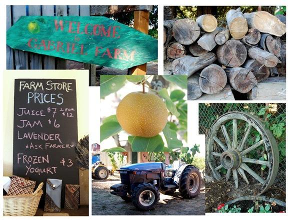gabriel farm collage