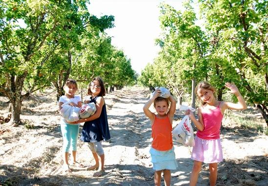 girls in orchard