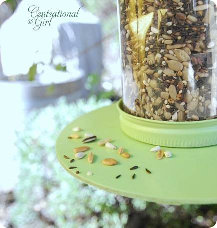 cg smaller birdseed in feeder