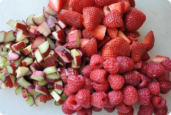 rhubarb raspberries strawberries