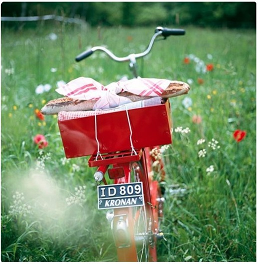 picnic to go