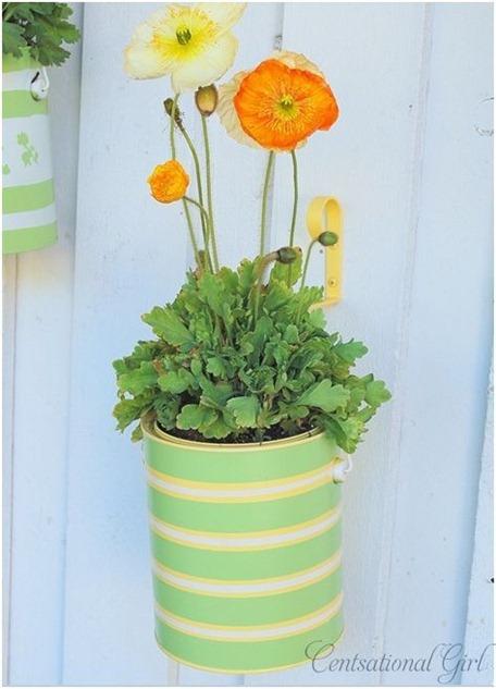 striped planter cg