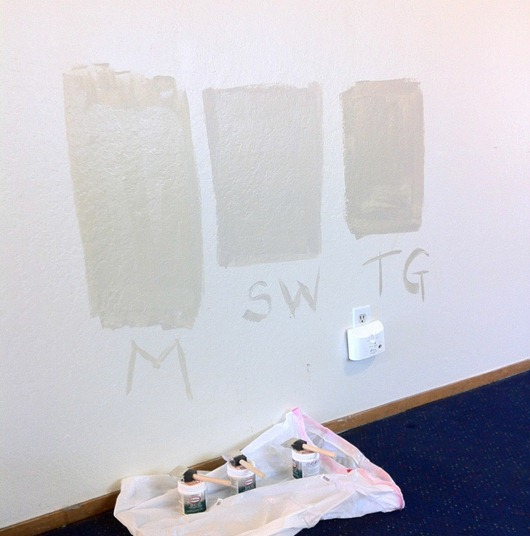 choosing paint
