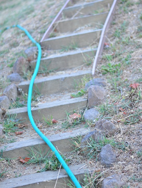 hose on path