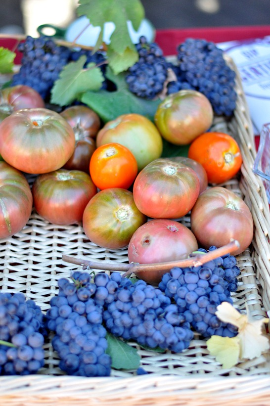tomatoes and wine grapes