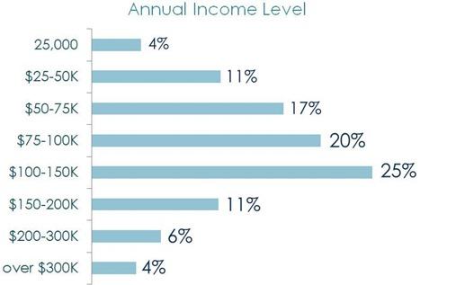 annual income level