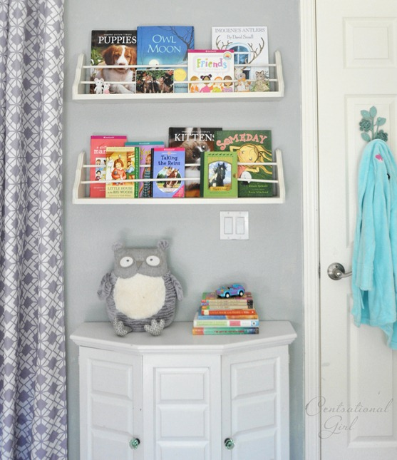 bookshelves and cabinet