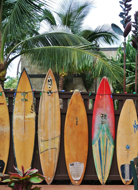 surfboards on fence