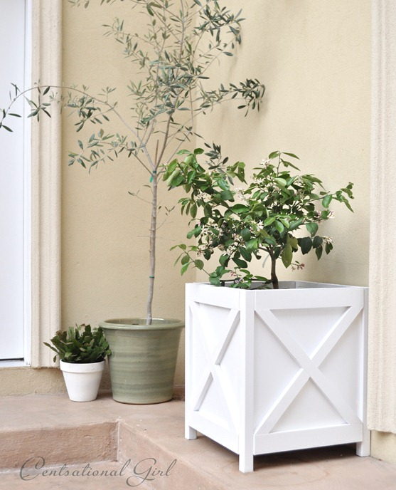 diy x pattern criss cross planter