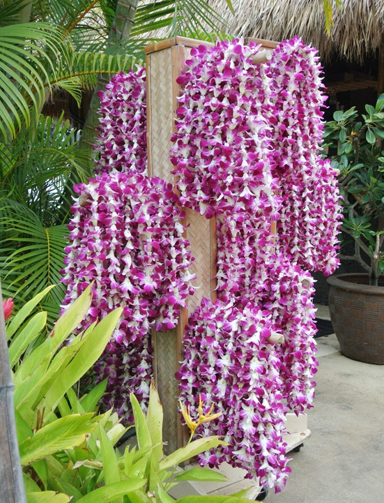 orchid leis