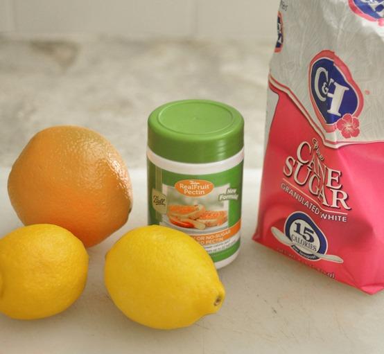 citrus pectin sugar