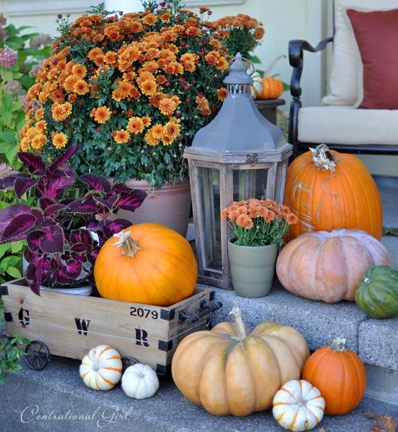 pumpkin medley