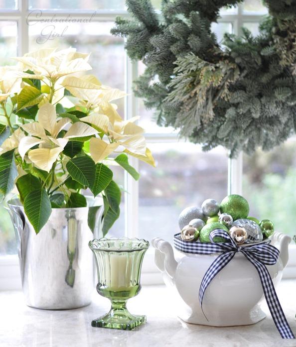 ornaments in tureen in window