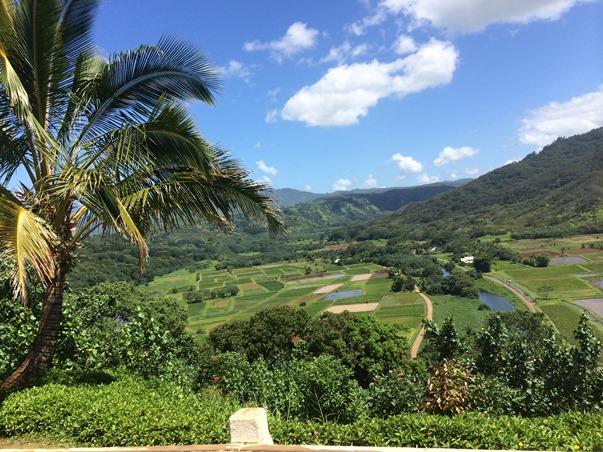 hanalei bay valley