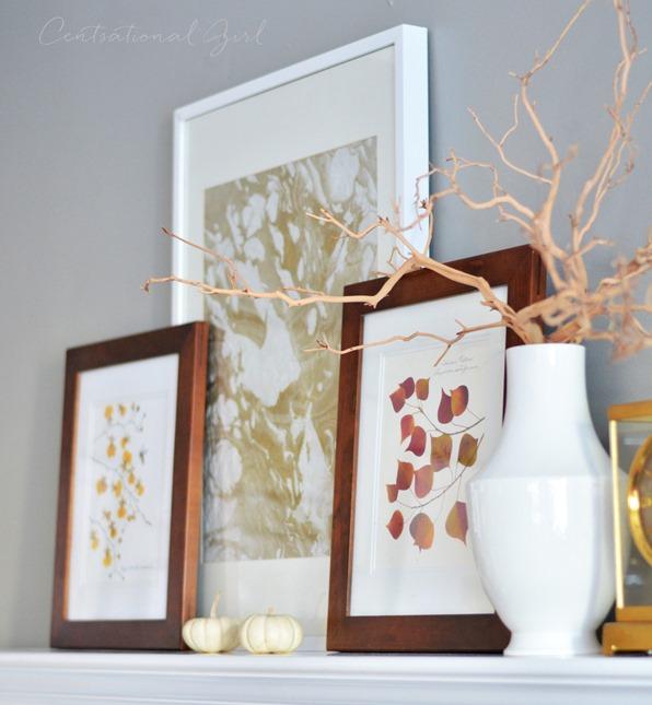 manzanita branches leaf prints
